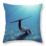 Wild Bottlenose Dolphin Throw Pillow by Jeff Rotman and Photo Researchers