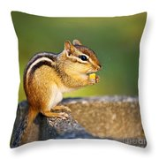Wild Chipmunk  Throw Pillow by Elena Elisseeva