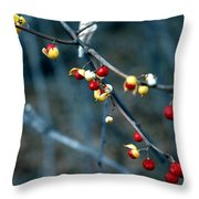 Wild Red Berries Out Of The Shell Throw Pillow by LeeAnn McLaneGoetz McLaneGoetzStudioLLCcom