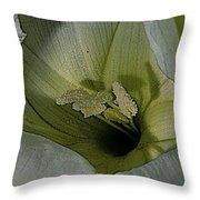 Wildflower Window Throw Pillow by Chris Berry