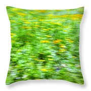 Wildflowers and Wind 2 Throw Pillow by Skip Nall