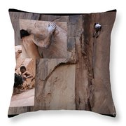 Willpower No Caption Throw Pillow by Bob Christopher