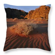 Wind Makes Waves In The Sand Throw Pillow by Annie Griffiths