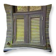 Window And Moss Throw Pillow by Carlos Caetano