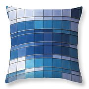 Windows Throw Pillow by Jane Rix