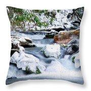 Winter Throw Pillow by Darren Fisher
