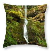 Winter Falls Throw Pillow by Adam Jewell
