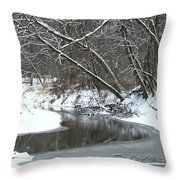 Winter In The Park Throw Pillow by Kay Novy