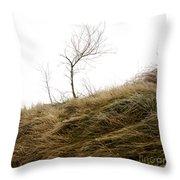 Winter landscape Throw Pillow by BERNARD JAUBERT