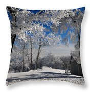 Winter Morning Throw Pillow by Lois Bryan
