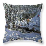 Winter Stream Throw Pillow by Andrew Macara