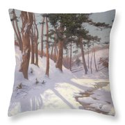 Winter woodland with a stream Throw Pillow by James MacLaren