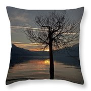 Wintertree In The Evening Throw Pillow by Joana Kruse