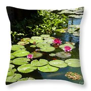 Wishes Among The Water Lilies Throw Pillow by Methune Hively