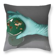 World Inside A Petri Dish Throw Pillow by Photo Researchers