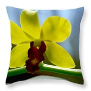 Yellow Beauty Throw Pillow by Pravine Chester