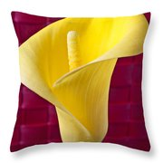 Yellow Calla Lily Red Mat Throw Pillow by Garry Gay