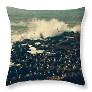 You Came Crashing Into My Heart Throw Pillow by Laurie Search