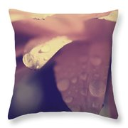 You Left Me Crying Throw Pillow by Laurie Search