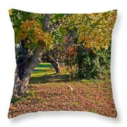 Youthful Memories  Throw Pillow by Pamela Patch
