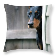 Attentive Throw Pillow by Rita Kay Adams