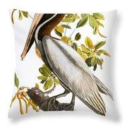 Audubon: Pelican Throw Pillow by Granger