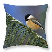 Black-capped Chickadee Throw Pillow by Tony Beck