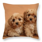 Cavapoo Pups Throw Pillow by Mark Taylor