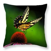 Dining Alone Throw Pillow by Lois Bryan