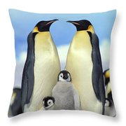 Emperor Penguin Aptenodytes Forsteri Throw Pillow by Konrad Wothe