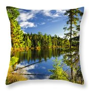 Forest and sky reflecting in lake Throw Pillow by Elena Elisseeva