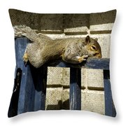 Grey Squirrel Throw Pillow by Mike Lester