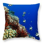 Hawaiian Reef Scene Throw Pillow by Dave Fleetham - Printscapes