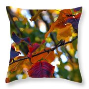 Leaves Of Autumn Throw Pillow by Stephen Anderson