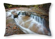 Ledge Brook - White Mountains New Hampshire Usa Throw Pillow by Erin Paul Donovan
