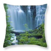 Lower Proxy Falls Throw Pillow by Greg Vaughn - Printscapes
