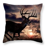 On The Run Throw Pillow by Bill Stephens