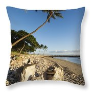 Palm And Driftwood Throw Pillow by Ron Dahlquist - Printscapes