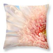Pink Daisy  Throw Pillow by Sandra Cunningham