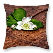 Plant 1 Throw Pillow by Amber Flowers