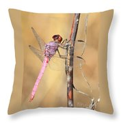 Red Dragonfly Portrait Throw Pillow by Carol Groenen