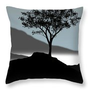 Serene Throw Pillow by Chris Brannen