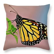 Taking A Break Throw Pillow by Christopher Holmes