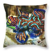 Tropical Fish Mandarinfish Throw Pillow by MotHaiBaPhoto Prints