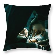 Untitled Throw Pillow by Dick Durrance Ii