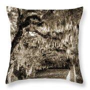 19th Century Slave House Throw Pillow by Dustin K Ryan