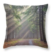 God beams - coniferous forest in fog Throw Pillow by Michal Boubin