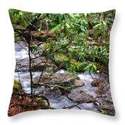 White Oak Run In Spring Throw Pillow by Thomas R Fletcher