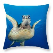 Green Sea Turtle Throw Pillow by Dave Fleetham - Printscapes