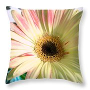 2567c2 Throw Pillow by Kimberlie Gerner